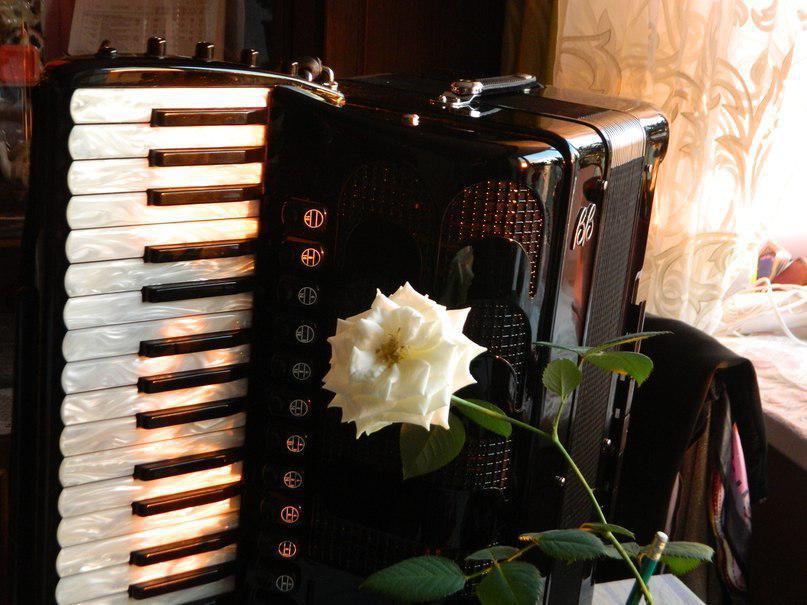 день музыки открытки баян туника позволяет использовать