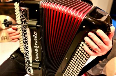 Духовые и язычковые музыкальные инструменты
